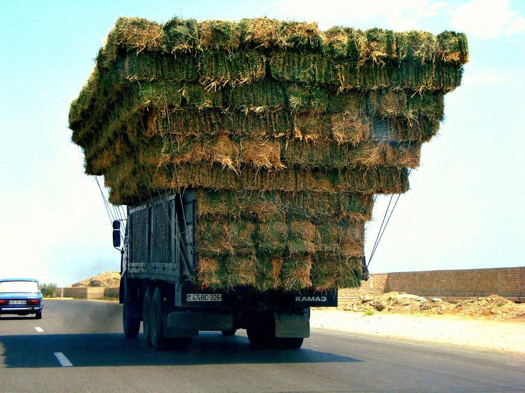 Днем, смешные картинки грузовой машины